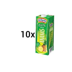 10x 1000ml Sterilgarda Succo Ananas