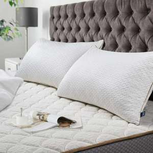 BedStory Coppia di Cuscini 42x70