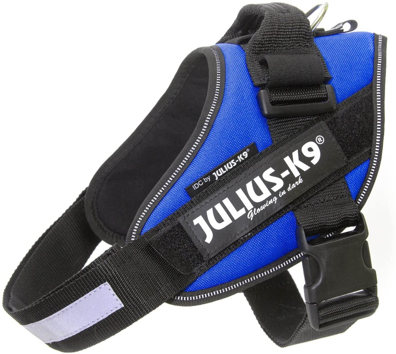 Julius-K9 Blu