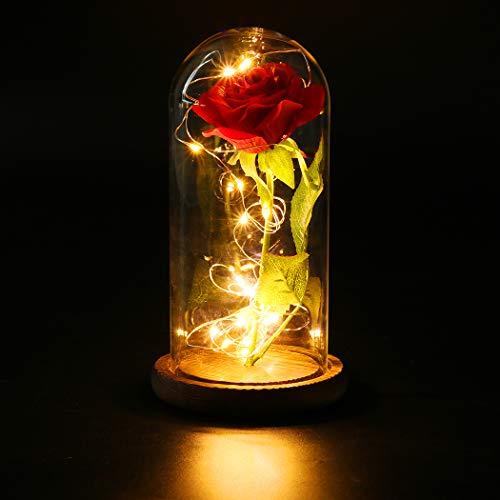 Rosa La Bella e la Bestia Rose Incantate con Luci LED