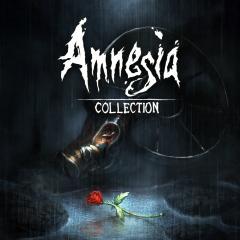 Amnesia Collection per PS4 2.8€
