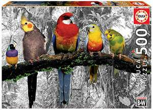 Educa Borras- Serie Coloured B&W Puzzle 500pz