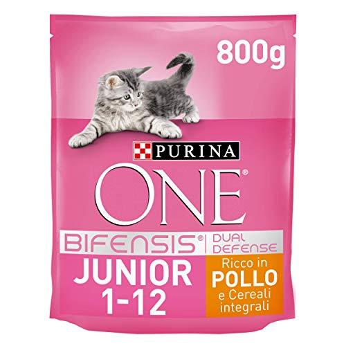 Purina One Bifensis Crocchette Gatto Junior 1-12 Mesi Ricco in Pollo e Cereali Integrali - 8 Sacchi da 800 g Ciascuno