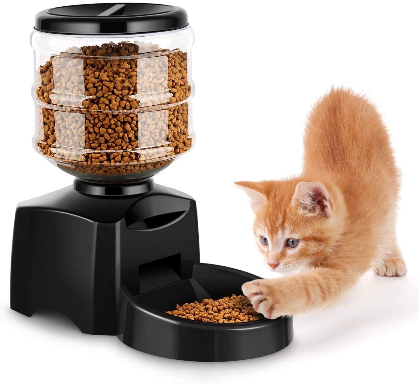 Distributore cibo per gatti