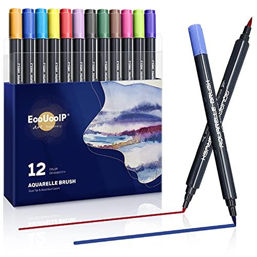Penne calligrafia, 12 pennelli per acquerello, set di penne a doppia punta, pennelli assortiti per libri da colorare e schizzi, idea regalo