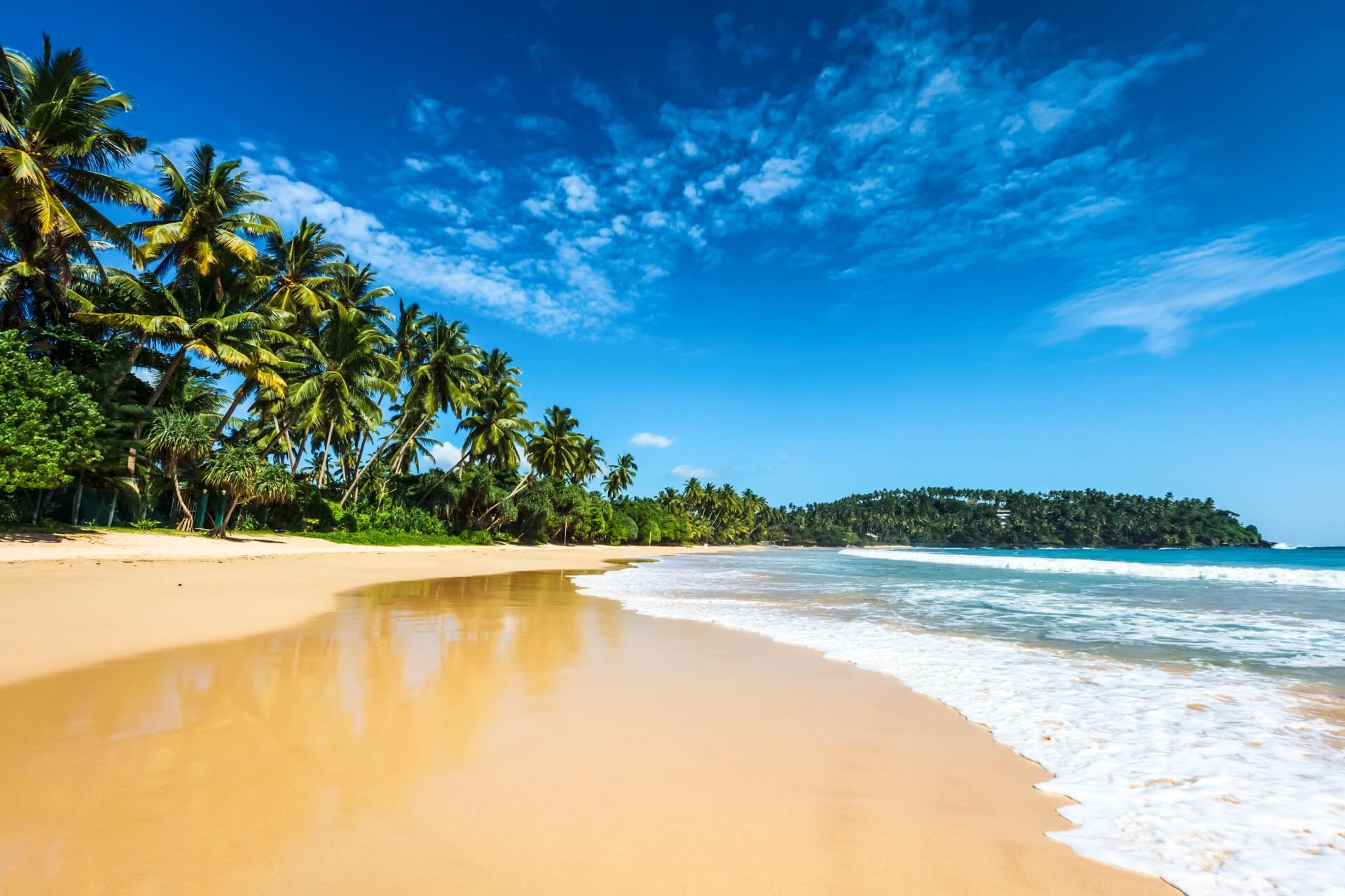 Voli Sri Lanka
